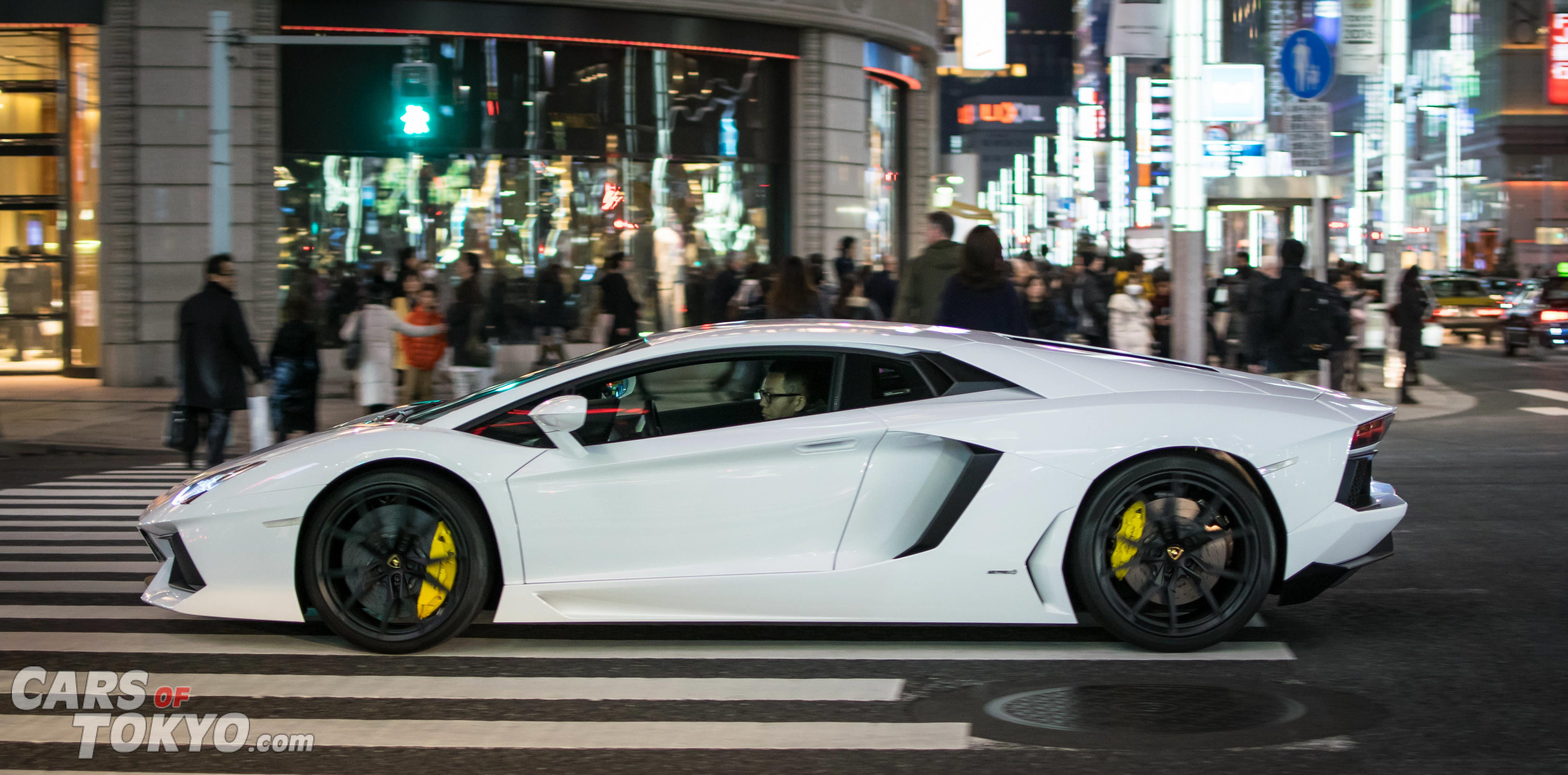 Night Rider Lamborghini Aventador